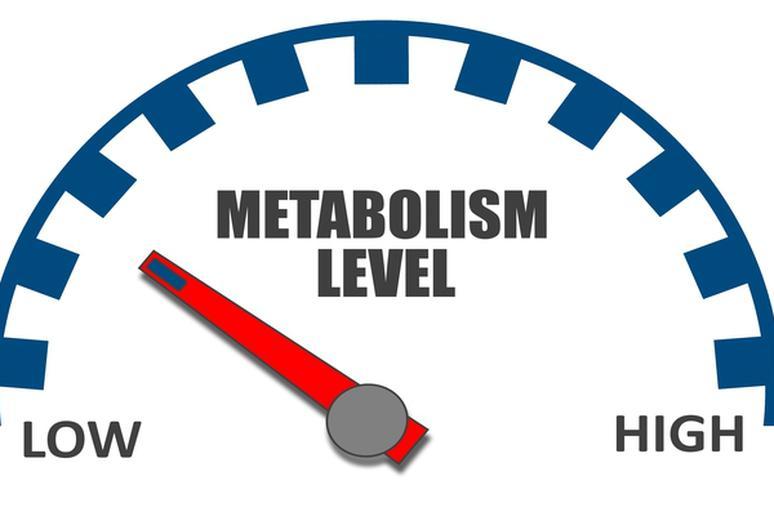 افزایش متابولیسم پس از جراحی چاقی